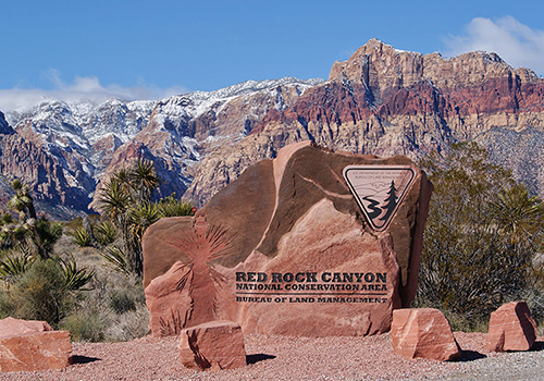 Red Rock Canyon Tour Policies & Waiver - Red Rock Scooter Tours